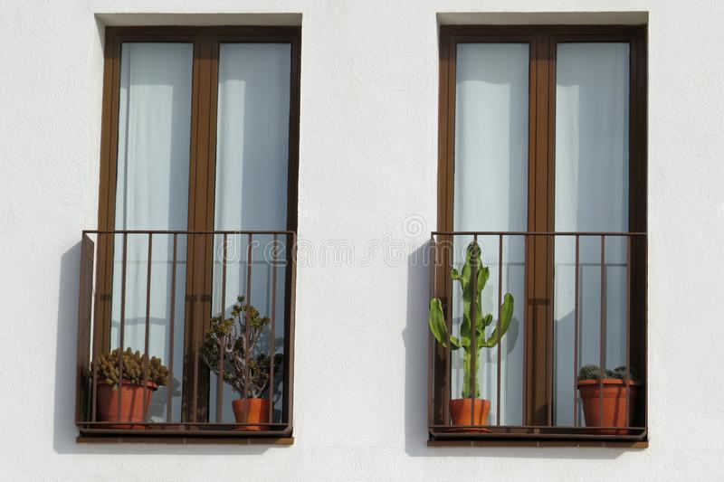 Closeup of a white house wall with two windows with brown frames and balcony grids and a minimalistic cactus balcony decoration. Most people with balconies love royalty free stock photography