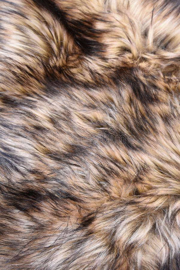 Wolf faux fur texture stock images