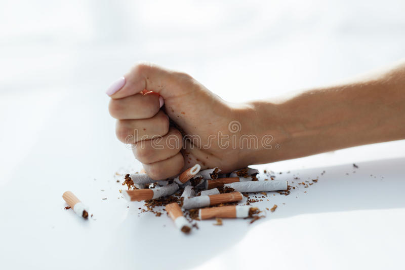 Closeup Of Woman Hand Breaking Cigarettes. Quit Bad Habit. Healthy Lifestyle. Closeup Of Woman Fist Breaking Many Cigarettes On White Background. Female Stops royalty free stock image