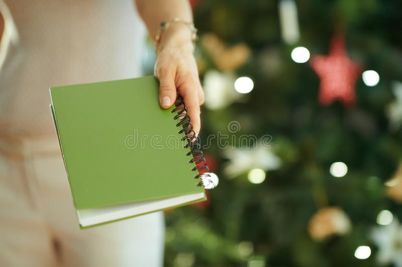 Closeup on woman near Christmas tree giving green notebook royalty free stock photos