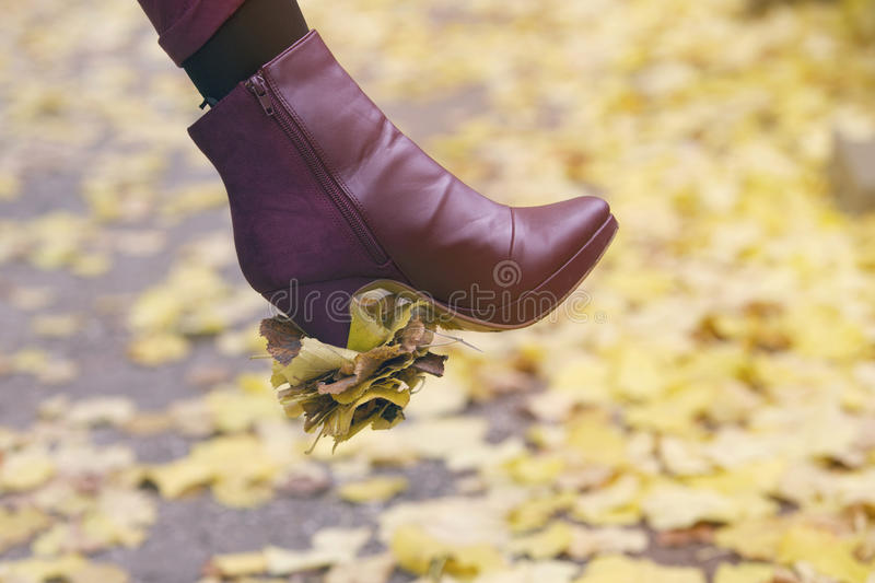 Closeup of woman's shoe with leaves stuck on her heal. Closeup of woman's shoe outdoors with leaves stuck on her heal royalty free stock photo