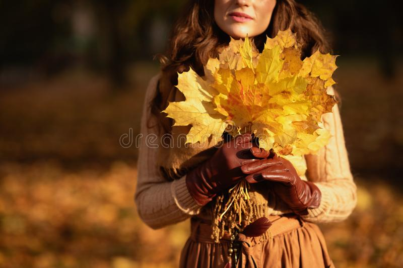 Closeup on woman with yellow leaves outside in autumn park stock images