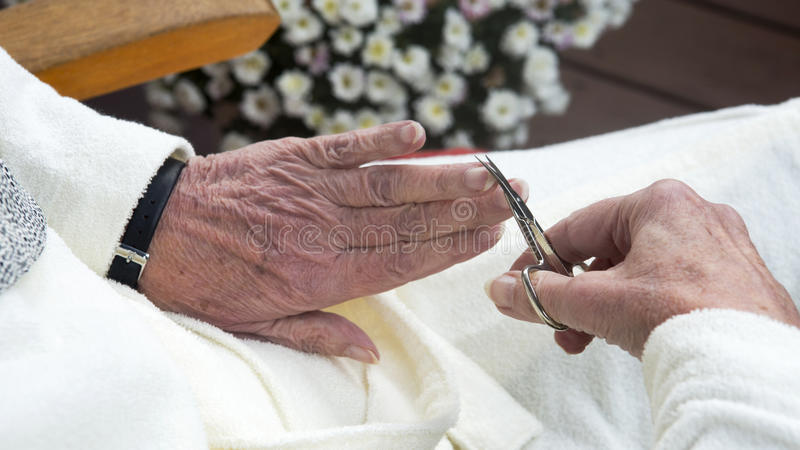 Closeup of wrinkled female hands cutting fingernail. Closeup of old wrinkled female hands cutting fingernail with scissors stock image