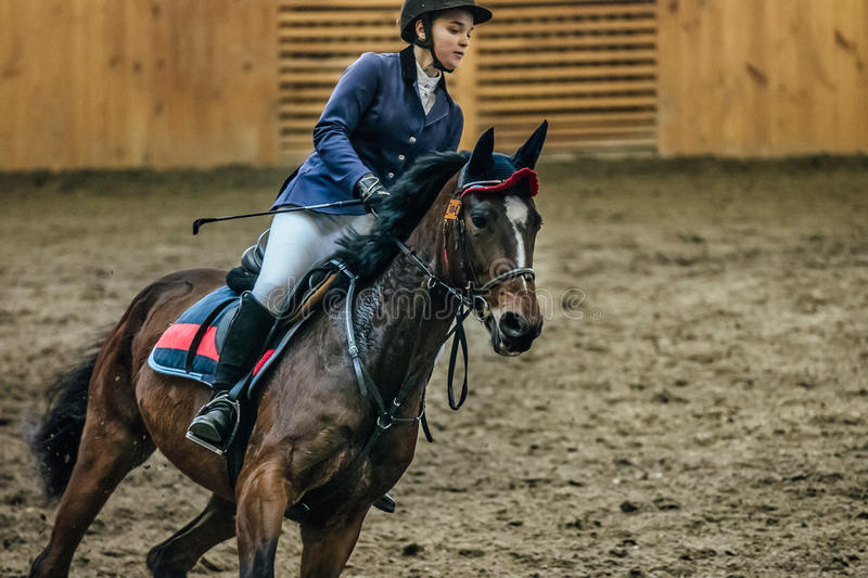 Closeup young girl rider on horseback on field at sports complex royalty free stock images