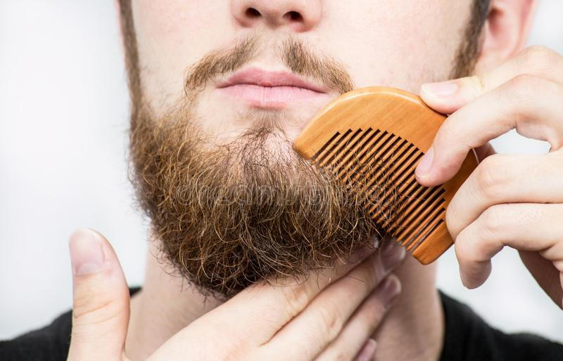 Closeup of a young man styling his long beard with a comb while standing alone in a studio against a white background. Beauty royalty free stock image