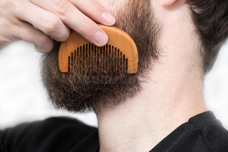 Closeup of a young man styling his long beard with a comb while standing alone in a studio against a white background. Beauty stock photography