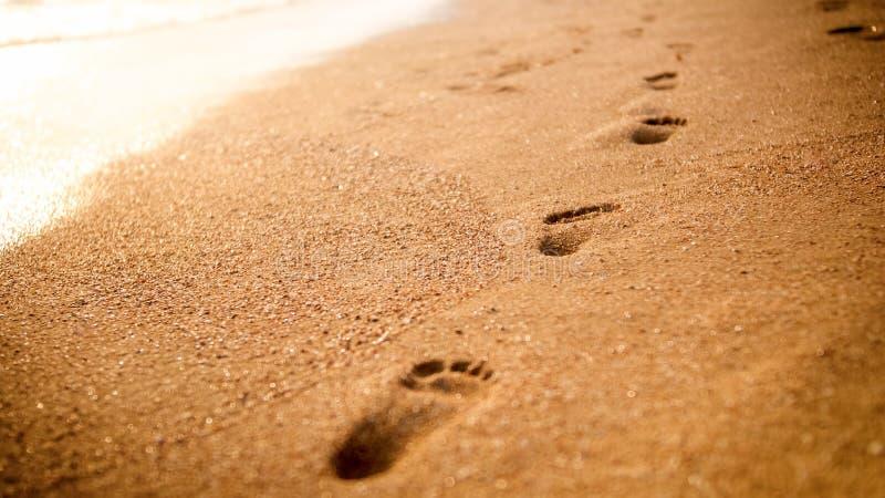 Closeupbild av den raka linjen av mänskliga fotspår på den guld- våta sanden på havsstranden på solnedgången royaltyfri bild