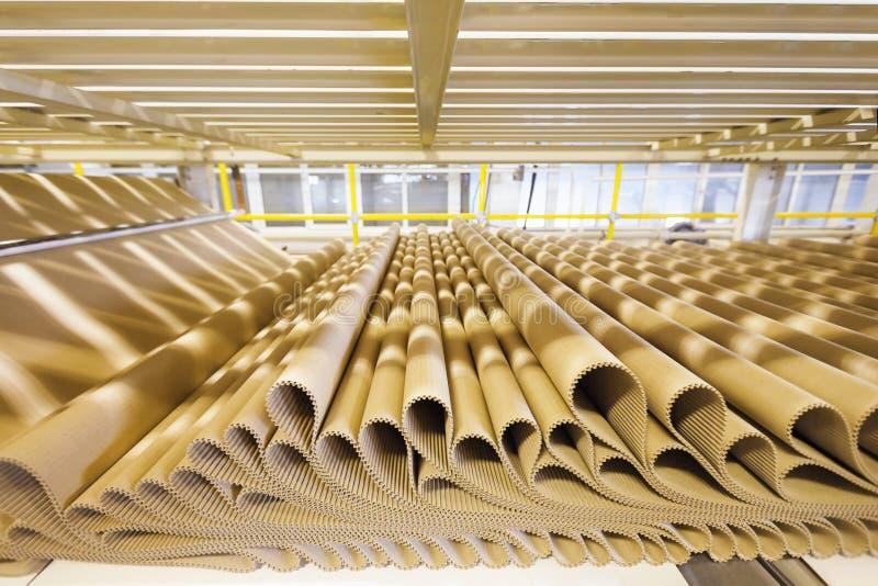 Closeupbild av plissépappraden på fabriksbakgrund royaltyfria bilder