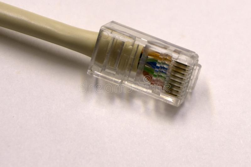 Closeupen av blått knyter kontakt Ethernetkabel på vit bakgrund med utrymme för text royaltyfri bild