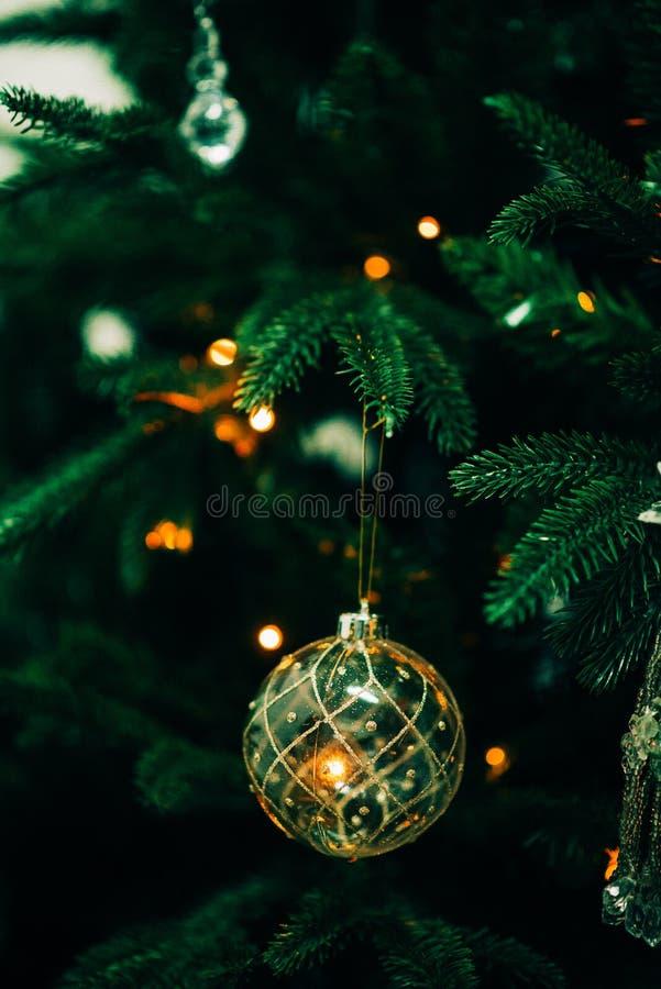 Closeupen av den gröna julgranen och rosa färger klumpa ihop sig garneringar royaltyfri fotografi