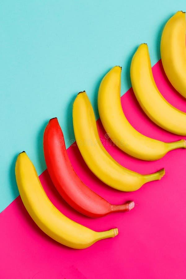 Closeupen av en röd banan bland mogen guling bär frukt på blå och rosa bakgrund arkivbild