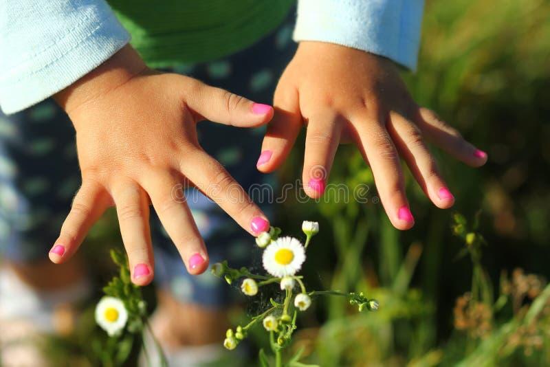 Closeupen av litet barnflicka` s spikar målade rosa färger royaltyfri fotografi