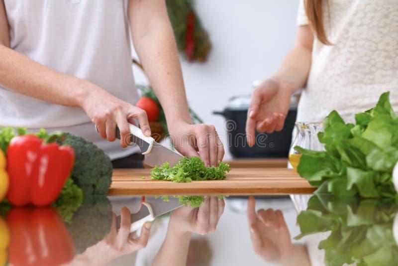 Closeupen av två kvinnor lagar mat i ett kök Vänner som har gyckel, medan förbereda ny sallad royaltyfri bild