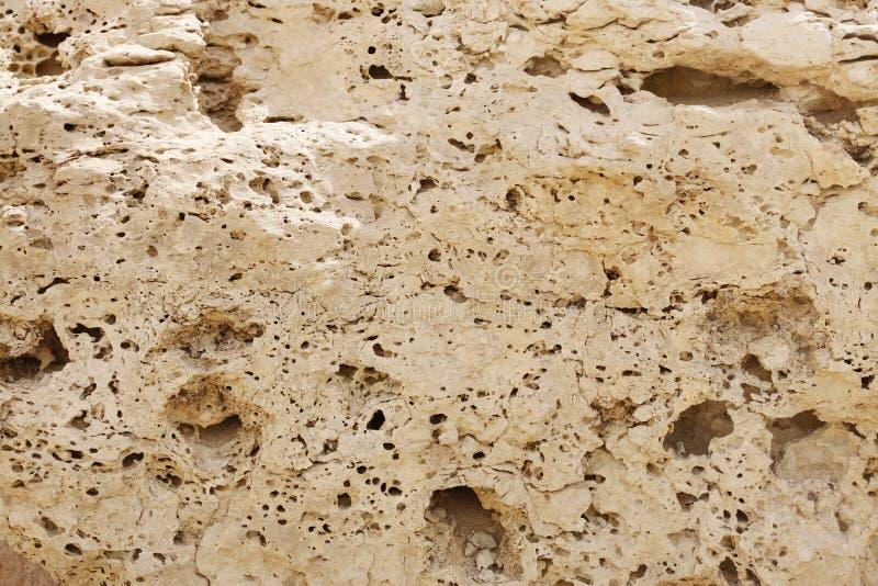Closeupen av Weathered kalksten vaggar royaltyfria foton