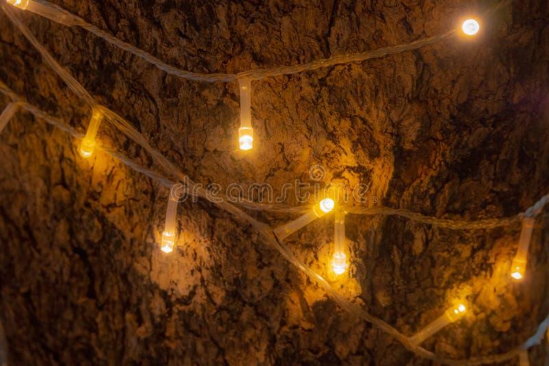 Closeupen dekorerar orange ljus på trädet fotografering för bildbyråer