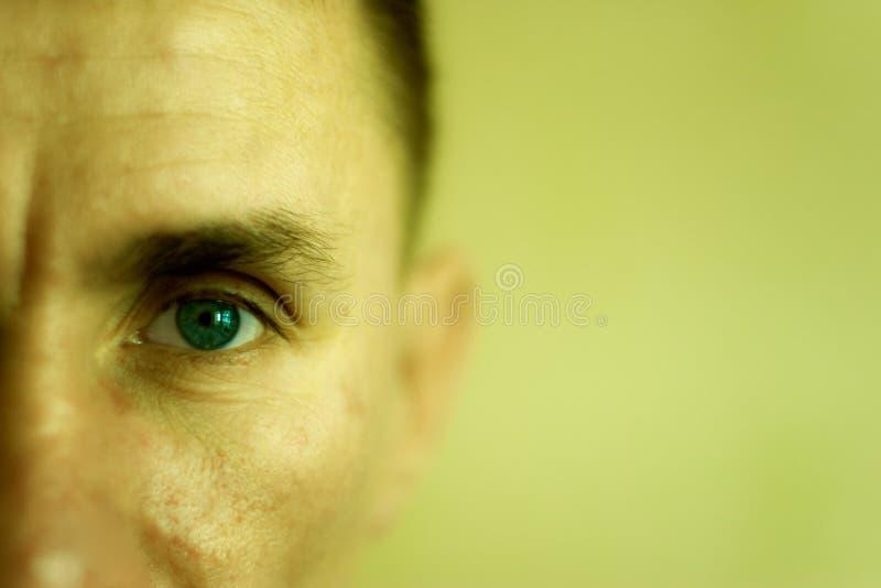 closeupframsidaman fotografering för bildbyråer