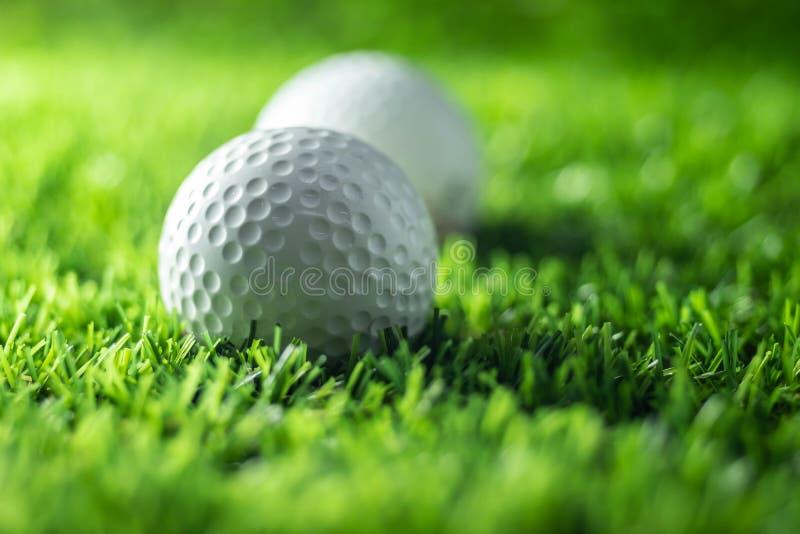 Closeupgolfboll på gräs arkivbild