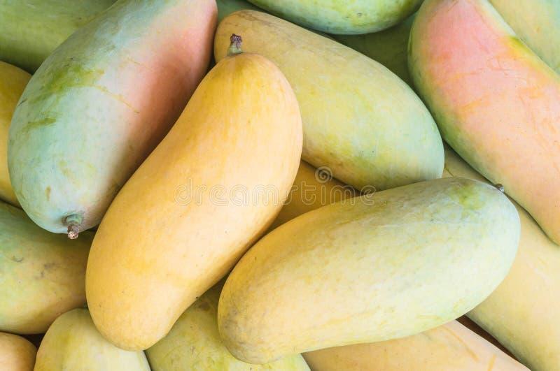 Closeuphög av mango texturerad bakgrund arkivfoto