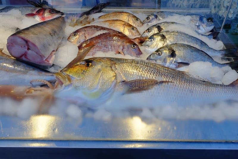Closeupsikt av nya och rå fiskar royaltyfri foto
