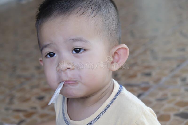 Closeupstående av den asiatiska pysen arkivfoto