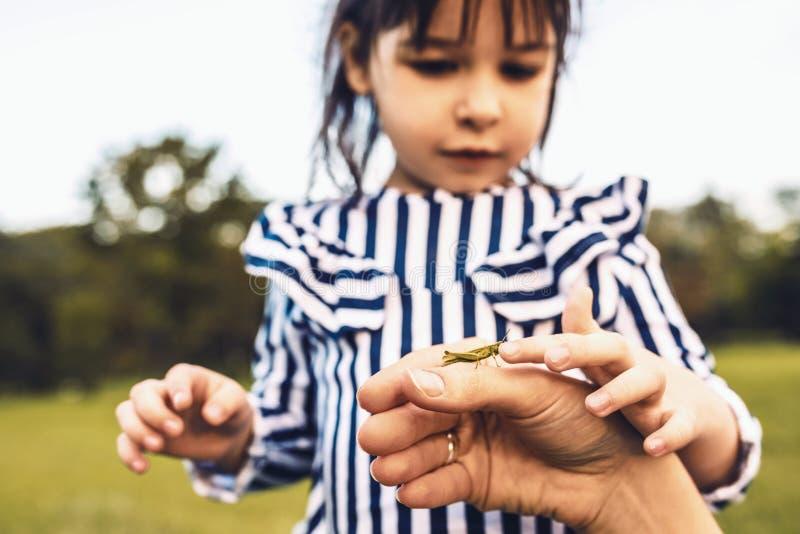 Closeupståenden av den gulliga lilla flickan undersöker den utomhus- naturen Älska modern och dottern spendera tid i parkerar til arkivfoton