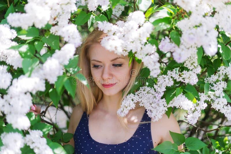 Closeupståenden av en härlig ung kvinna i blått klär på bakgrunden av de körsbärsröda blomningarna arkivbild