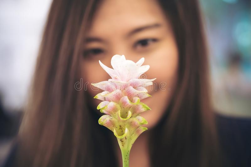 Closeupsuddighetsbild av en härlig asiatisk kvinna som ser en rosa Siam Tulip blomma arkivfoto