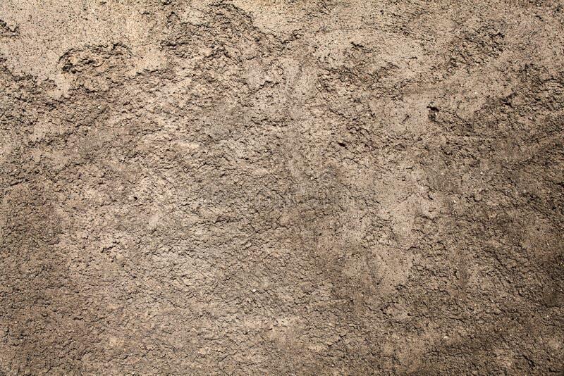 Closeupvägg arkivfoton