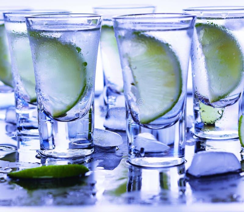 Closeupvodka i ett exponeringsglas med is, limefruktvodka, gin, uppiggningsmedel, tequila royaltyfria foton