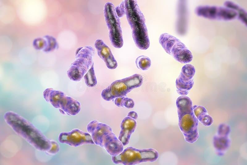 Clostridium Perfringens bakterie royalty ilustracja