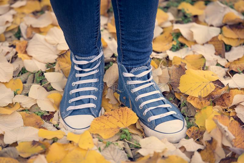Closup photo of  legs and sneakers. Closup photo of legs and sneakers in autumn park stock images