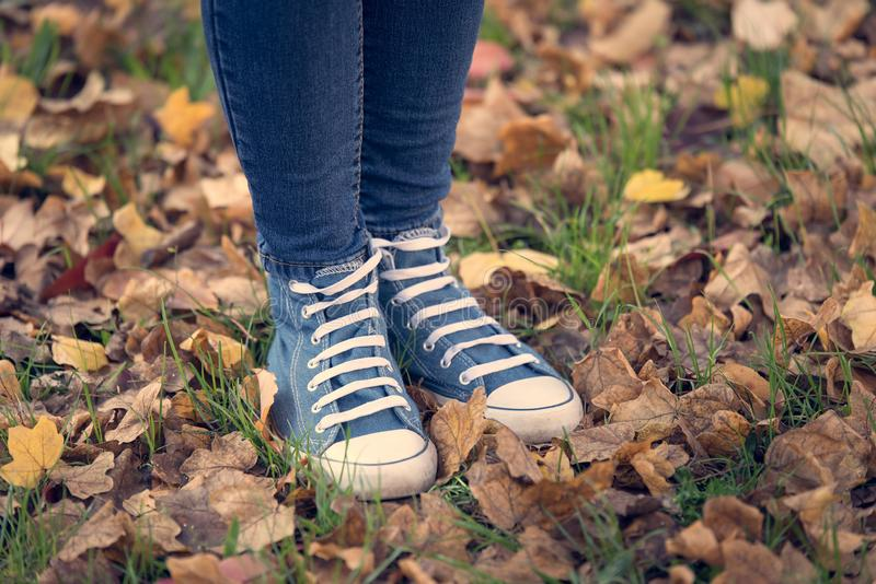 Closup photo of  legs and sneakers. Closup photo of legs and sneakers in autumn park stock image