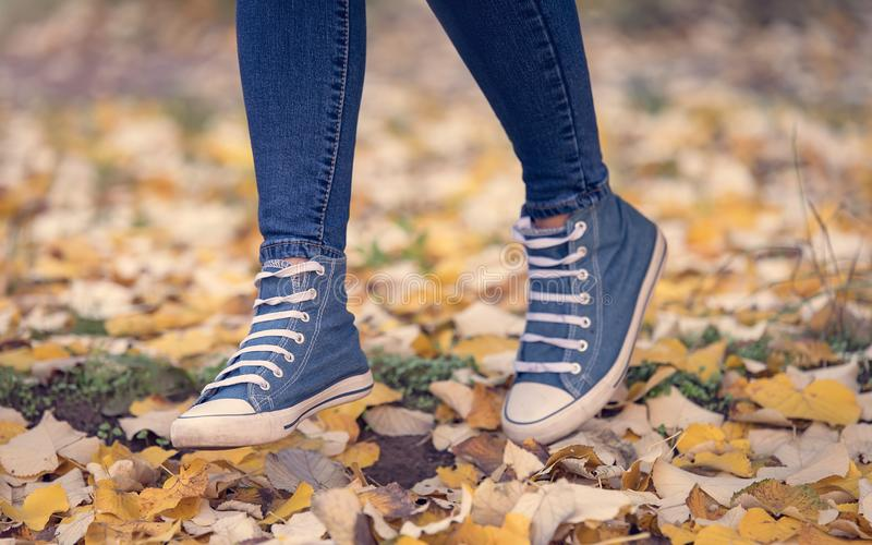 Closup photo of  legs and sneakers. Closup photo of legs and sneakers in autumn park royalty free stock photo