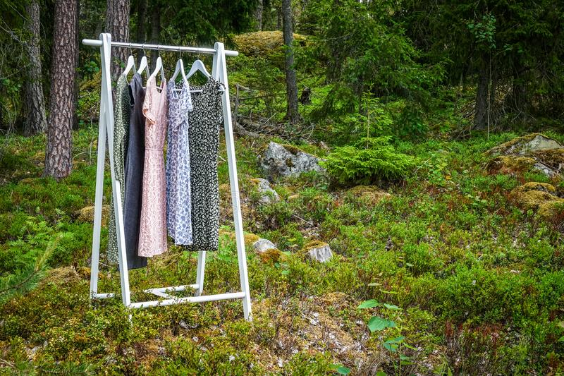 Clothes hanger with dresses in the woods. Concept for organic clothes, eco-friendly, ecological fashion stock image