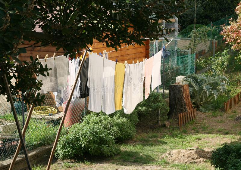 Download Clothes hanging stock image. Image of laundry, clean - 19286819