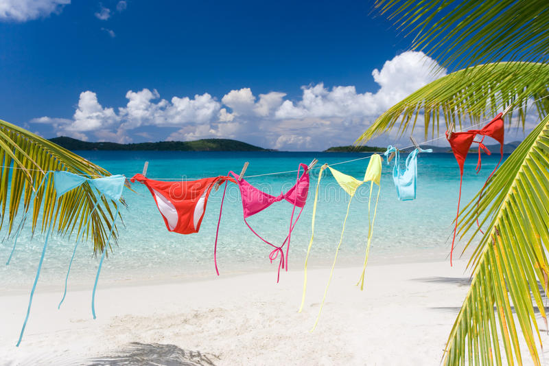 Download Clothes line stock image. Image of paradise, blue, tropical - 11307739