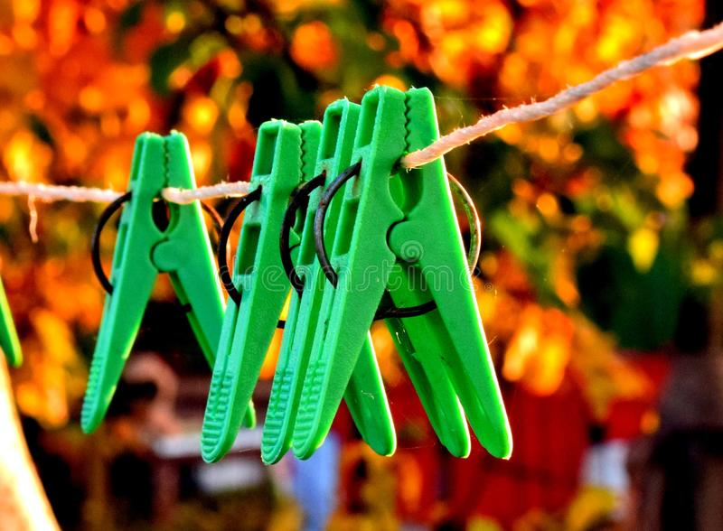 Clothes pins on line rope on background of golden leaves. Clothes plastic pins on line rope stretched between two apple trees in my garden: we use these pegs to stock image