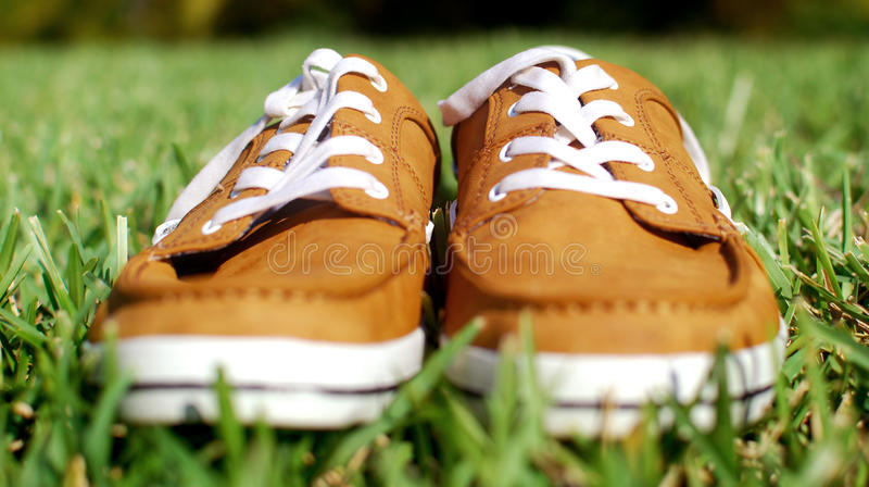 Clothes up of generic laced shoe on green grass. Warm and saturated image of pair of shoes isolated on lushious green grass. Has shallow depth of field royalty free stock images
