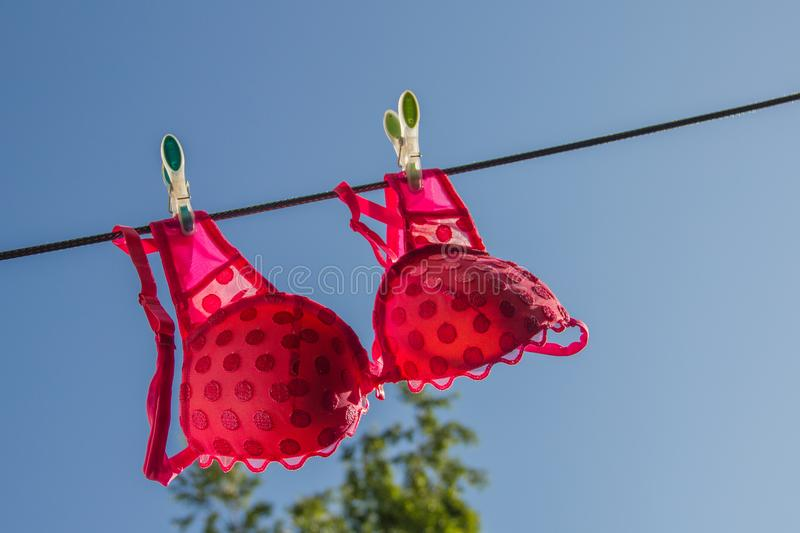 Clothesline with pink bra royalty free stock photos