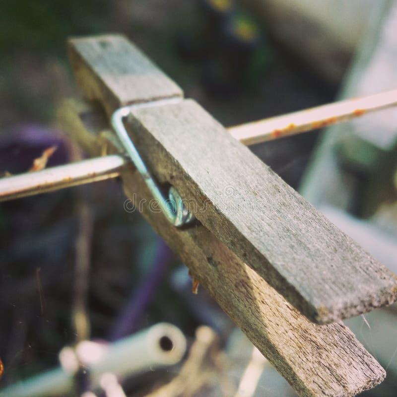 clothespin стоковая фотография rf
