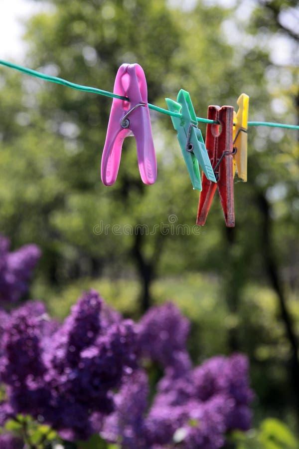 Clothespins stockbilder