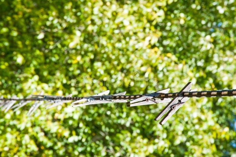 Clothespins стоковые изображения rf