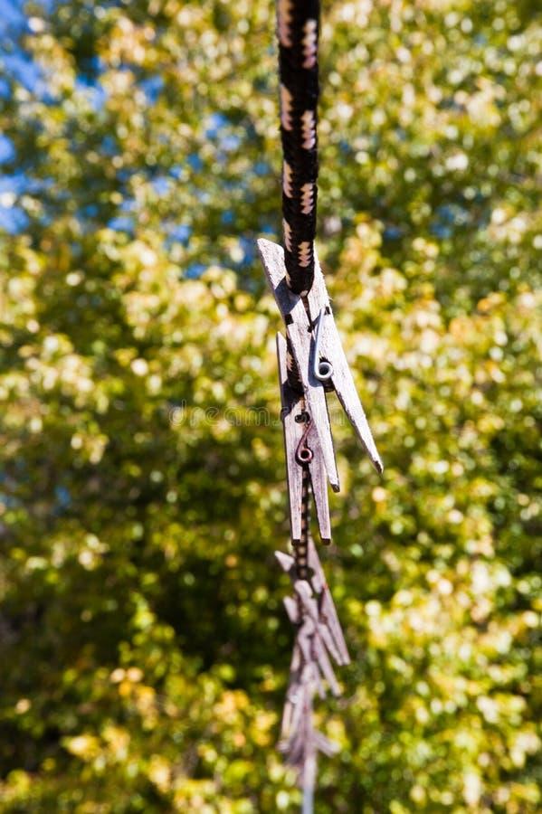 Clothespins стоковая фотография rf