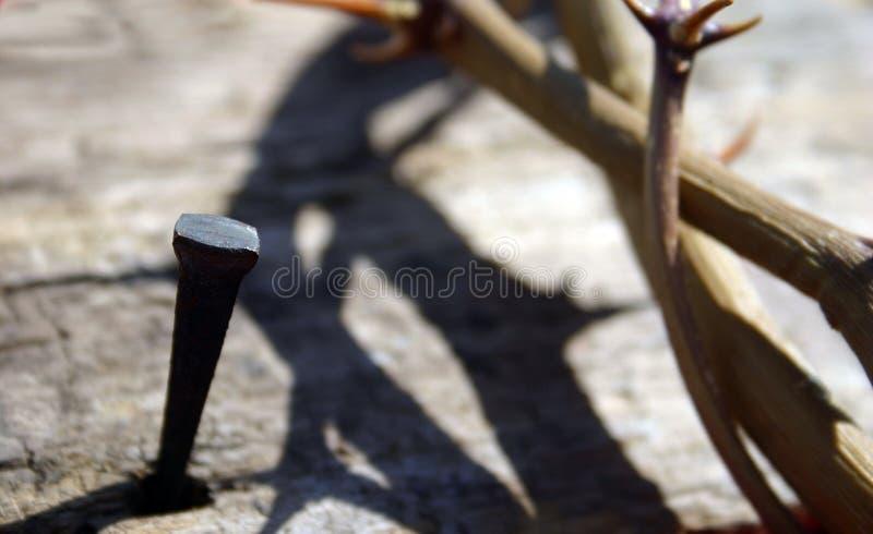 Clou avec la tête photo libre de droits