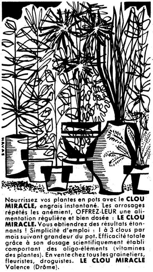 Clou Miracle Free Public Domain Cc0 Image