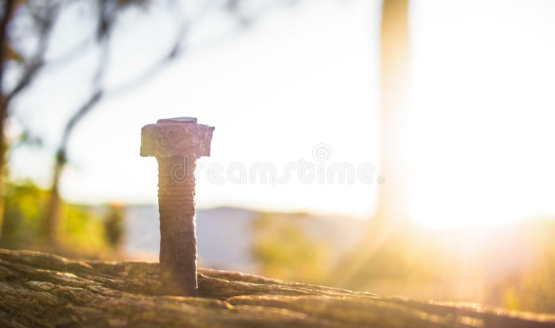 Clou rouillé en nature photo libre de droits