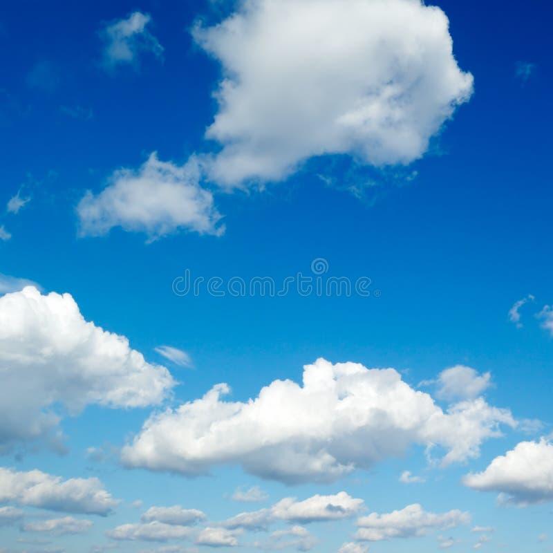 cloud obraz stock