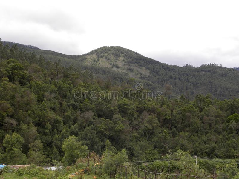 Green Palani hills and mountain range with trees. Cloud covered Palani hills, it is the main watershed for the Vaigai South and Amaravathi Cauvery North Basins stock photo