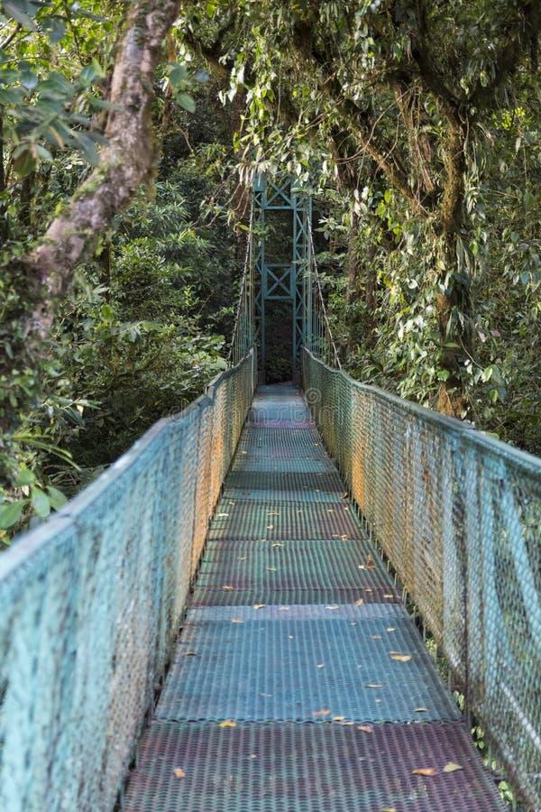 Cloud Forest hanging bridge, Costa Rica stock photo