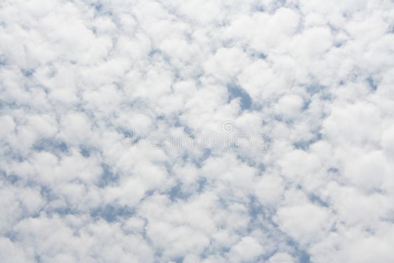 Cloud forest on sky. Close up Cloud forest on sky stock photography